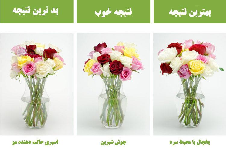 چگونه ماندگاری گل ها را بیشتر کنیم؟