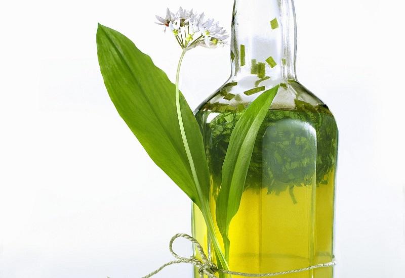 معرفی 16 گیاه دارویی