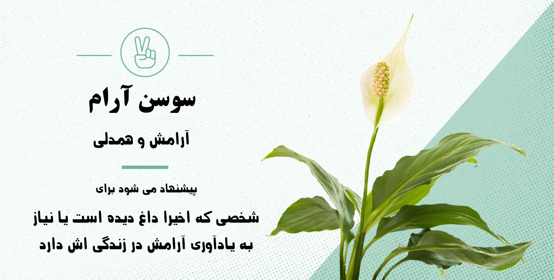 نماد شناسی گیاهان