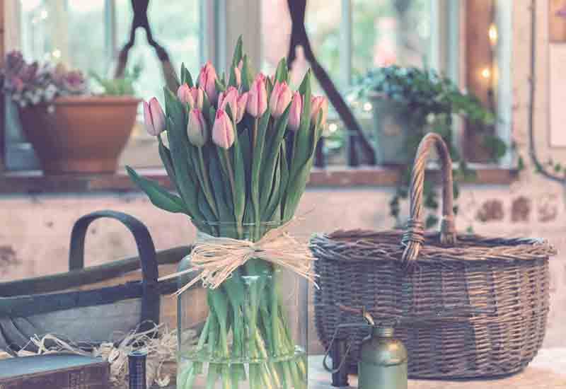 مراقبت گل لاله