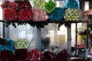 بازار گل امام رضا